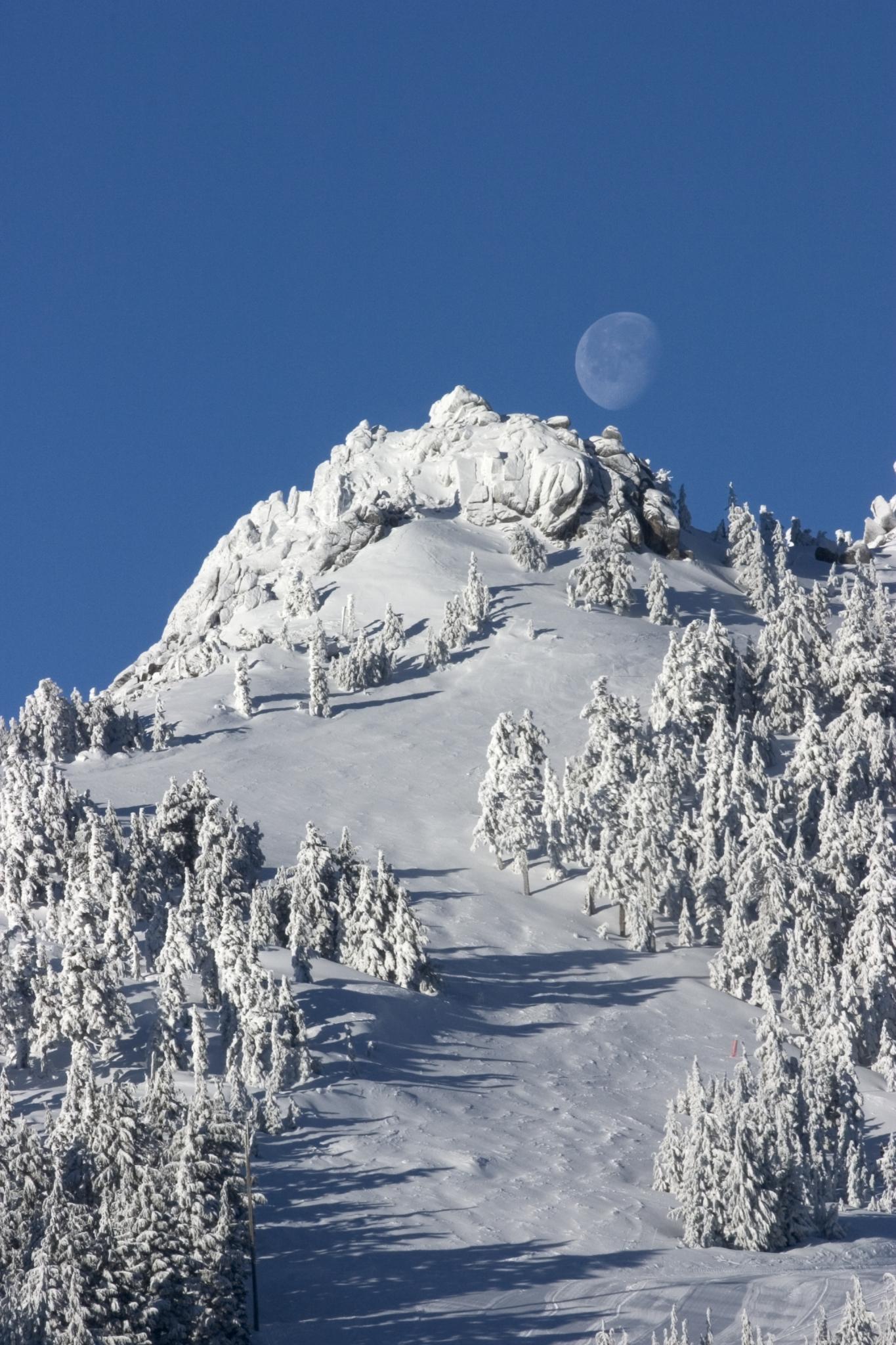 Mt. Ashland, Oregon - James Niehues - Map Artist - Ski Maps ...