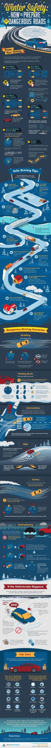 Winter Driving Guide